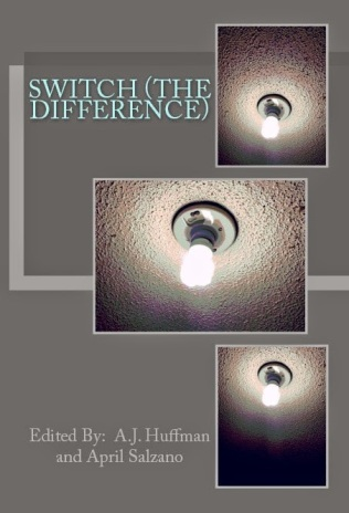 Switch (the Difference) Cover 2