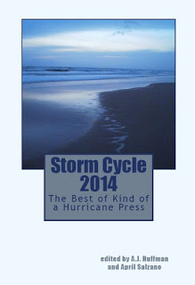 Storm Cycle 2014 Cover
