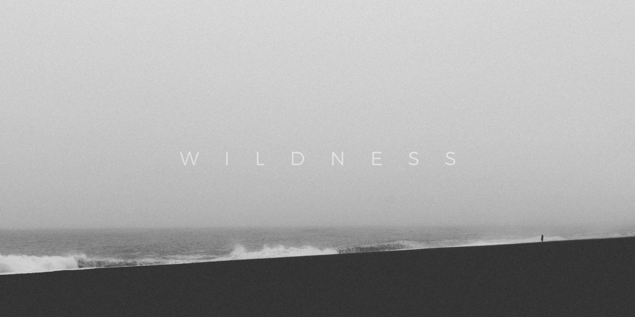wildness3