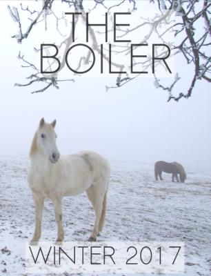 winter17_boiler